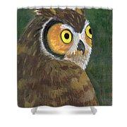 Owl 2009 Shower Curtain