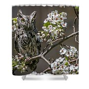Owl Among The Blossoms Shower Curtain