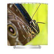 Owl Butterfly In Yellow Flower Shower Curtain
