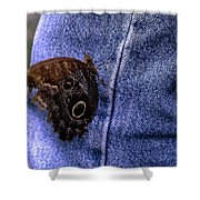 Owl Butterfly On Jeans Shower Curtain