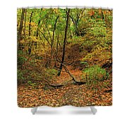 Owl Canyon In Autumn 2 Shower Curtain