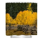Owl Creek Fence Shower Curtain
