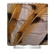 Owl Feathers Photograph Shower Curtain