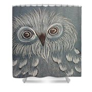 Owl In The Blue Shower Curtain by Ginny Youngblood