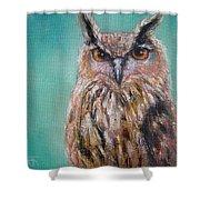 Owl No.5 Shower Curtain
