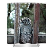 Owl On Deck Shower Curtain