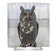 Owl On The Beach Shower Curtain