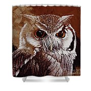 Owl Painting  Shower Curtain