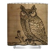 Owl Pyrography Shower Curtain