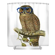 Owl Sitting On A Branch With Blue Glasses Shower Curtain