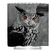 Owls Eye Shower Curtain