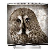 Owls Eyes -vintage Series Shower Curtain