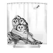 Owls In A Shoe Shower Curtain