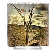 Owls Roost Shower Curtain