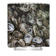 Oysters Four Shower Curtain