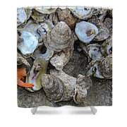 Oysters One Shower Curtain