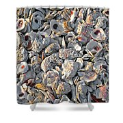 Oysters Shells Shower Curtain