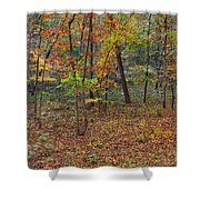 Ozark Forest In Fall 1 Shower Curtain