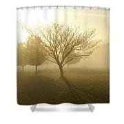 Ozarks Misty Golden Morning Sunrise Shower Curtain
