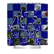 P Patch Poppies Shower Curtain