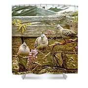 pa FB GregPostle CrestedPigeon Penny Olsen Shower Curtain