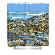 Pacific Coast Tide Pools Shower Curtain
