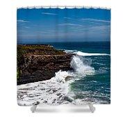 Pacific Coastline Shower Curtain