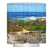 Pacific Pathway Shower Curtain