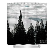 Pacific Pines Shower Curtain