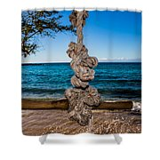 Pacific Rope Swing Shower Curtain