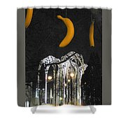 Pacific Science Gate Shower Curtain
