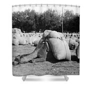 Pack Camel, C1910 Shower Curtain