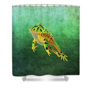 Pacman Frog Shower Curtain