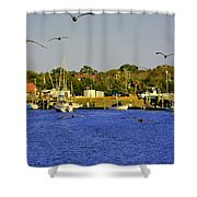 Paddle Boarders Vs Birds Shower Curtain