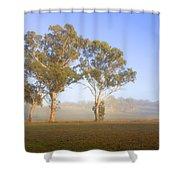 Paddock Sunrise Shower Curtain