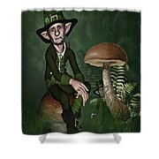 Irish Forklore Shower Curtain