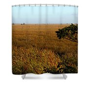 Pahayokee Shower Curtain