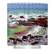 Pahoehoe Winter Surf Shower Curtain
