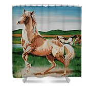 Paint Shower Curtain