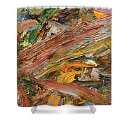 Paint Number 41 Shower Curtain by James W Johnson