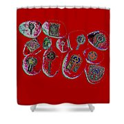 Painted Asteroids 3 Shower Curtain by Eikoni Images