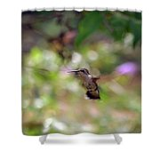 Painted Background Shower Curtain