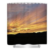 Painted Beautiful Shower Curtain