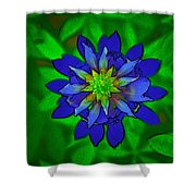 Painted Bluebonnet Shower Curtain