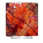 Painted Branches Abstract 5 Shower Curtain