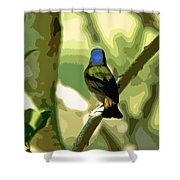 Painted Bunting Cutout Shower Curtain