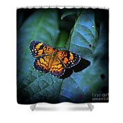 Painted Butterfly Shower Curtain