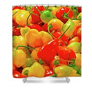 Painted Chilies Shower Curtain