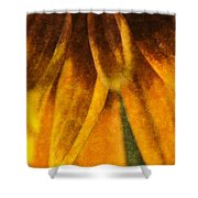 Painted Daisy Petals Shower Curtain