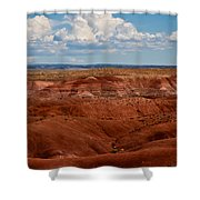 Painted Desert #4 Shower Curtain